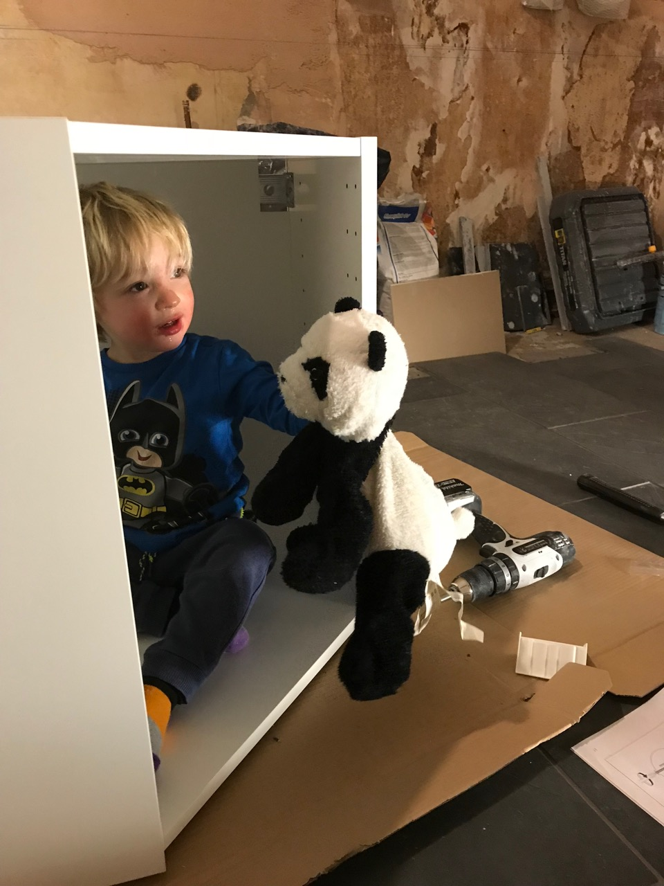 Angus with his panda sitting inside a kitchen cabinet before it's fitted